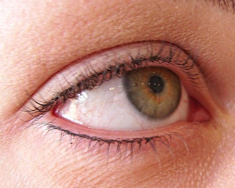Semi-Permanent Eyelashe